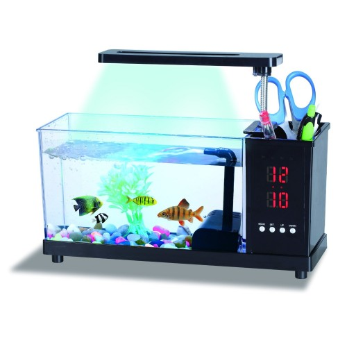 Usb desktop aquarium price in pakistan at symbios pk for Desktop fish tank