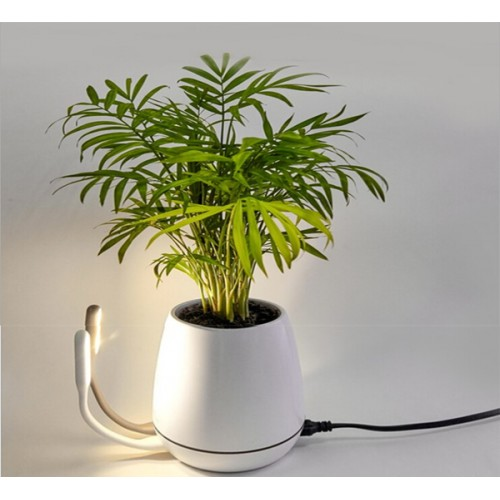 Fast Dual Usb Charger With Pen Jar Flower Vase Price In Pakistan