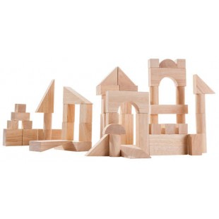 Plan Toys 50 Unit Blocks  PT5502  price in Pakistan