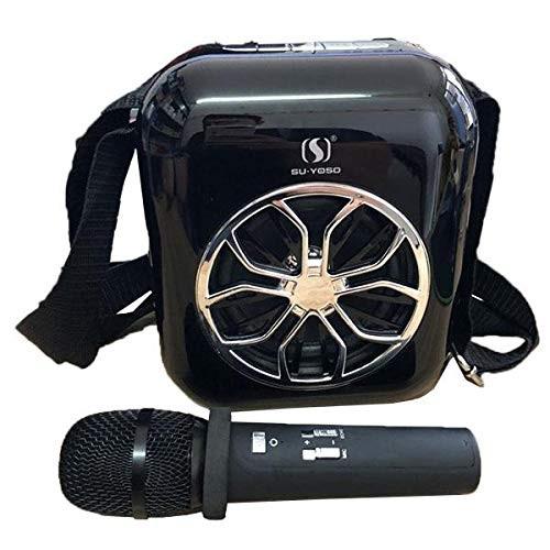 Karaoke Mini Portable Speaker With Wireless Microphone Price In Pakistan At Symbios Pk