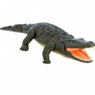 Crocodile Remote Control price in Pakistan