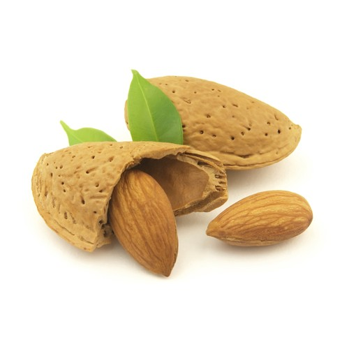 Pay Shell Credit Card >> Badam (Almond With Shell) (1KG) price in Pakistan at Symbios.PK
